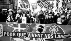 Ley Molac, sentencia del Tribunal Constitucional francés y sus consecuencias