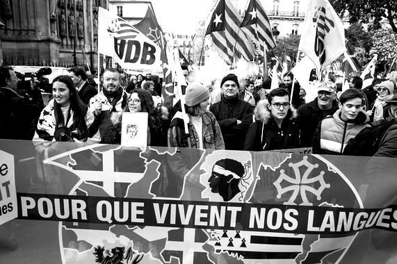 Molac Legea, Frantziako Konstituzio Kontseiluaren ebazpena eta bere ondorioak